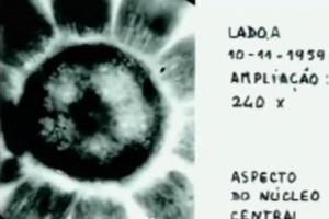 hth - Los microorganismos que calleron en Evora tras el paso de un OVNI