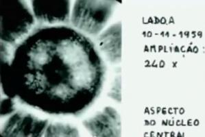 hth1 e1385698752575 - Los microorganismos que calleron en Evora tras el paso de un OVNI