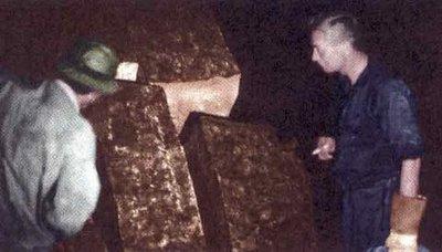 El misterio de la Cueva de los Tayos - Biblioteca Metálica
