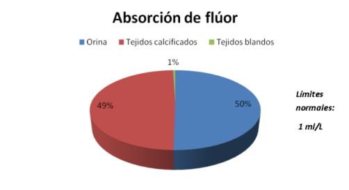 fluor+en+el+cuerpo