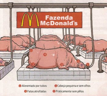 MC Donalds - Farm